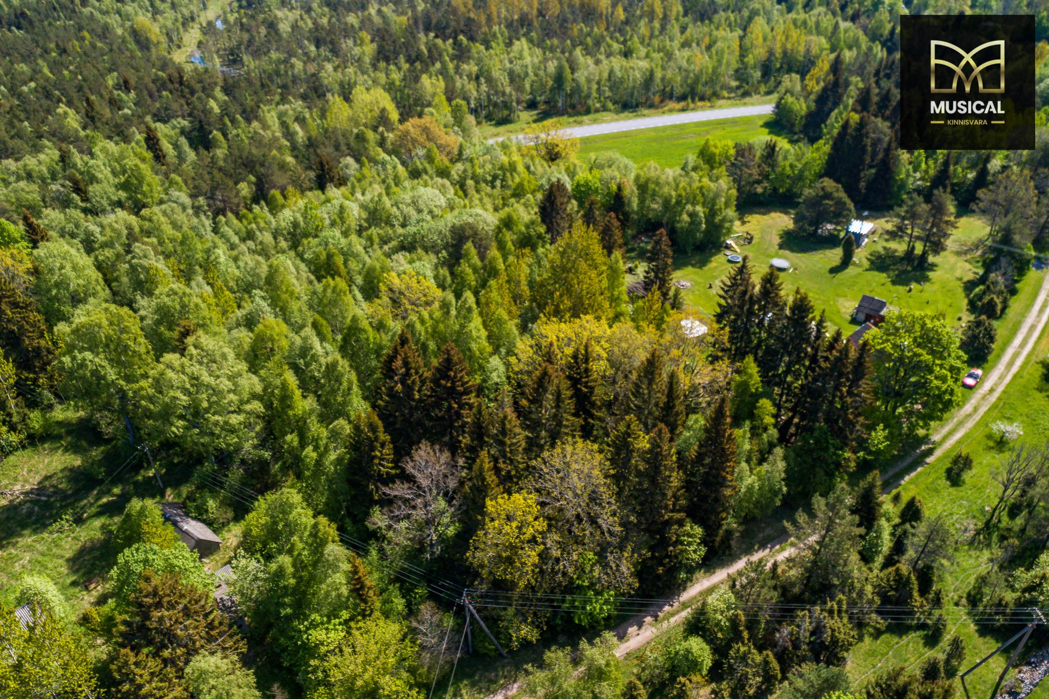 Müüa Saaremaal elamumaa kinnistu